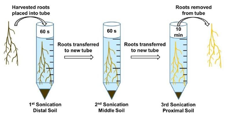 5 Contoh Aplikasi Getaran Dan Gelombang Dalam Teknologi Materi Kimia
