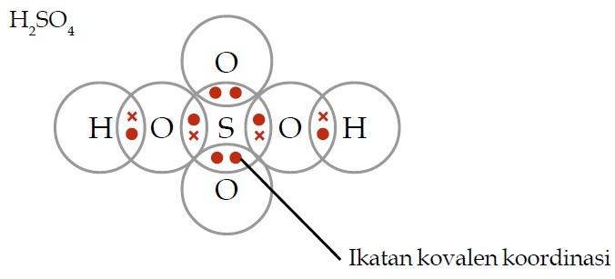 8 Contoh Soal Struktur Lewis Dan Pembahasannya Materi Kimia